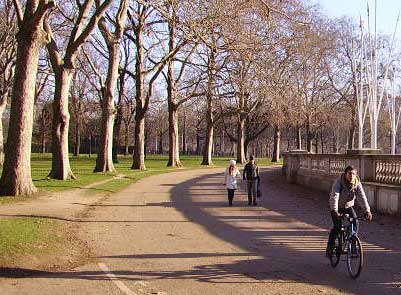 Cycling through Green Park in winter